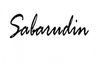 Sabarudin (2020)